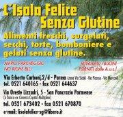 Degustazione Birra senza glutine GREEN'S a San Pancrazio Parmense (Parma)